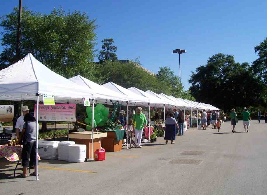 Upcoming Outdoor Festivals at Bashas - Fill Your Plate Blog