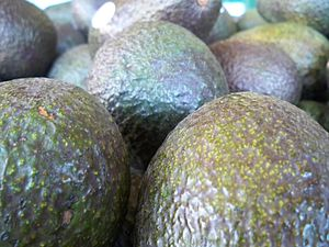 English: Avocados at a market.