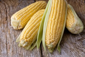 Arizona sweet corn
