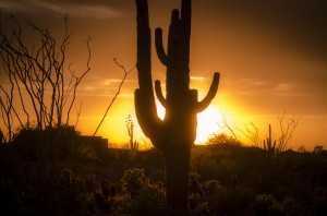 Follow these tips to save money and keep cool this summer in Arizona (photo credit: BigStockPhoto.com)