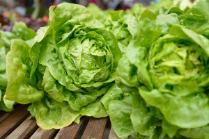 lettuce Arizona