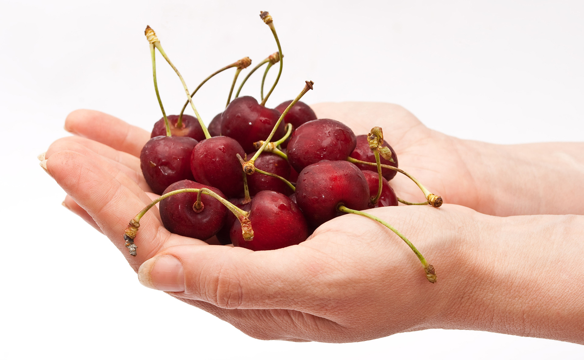 Hand holding red cherry