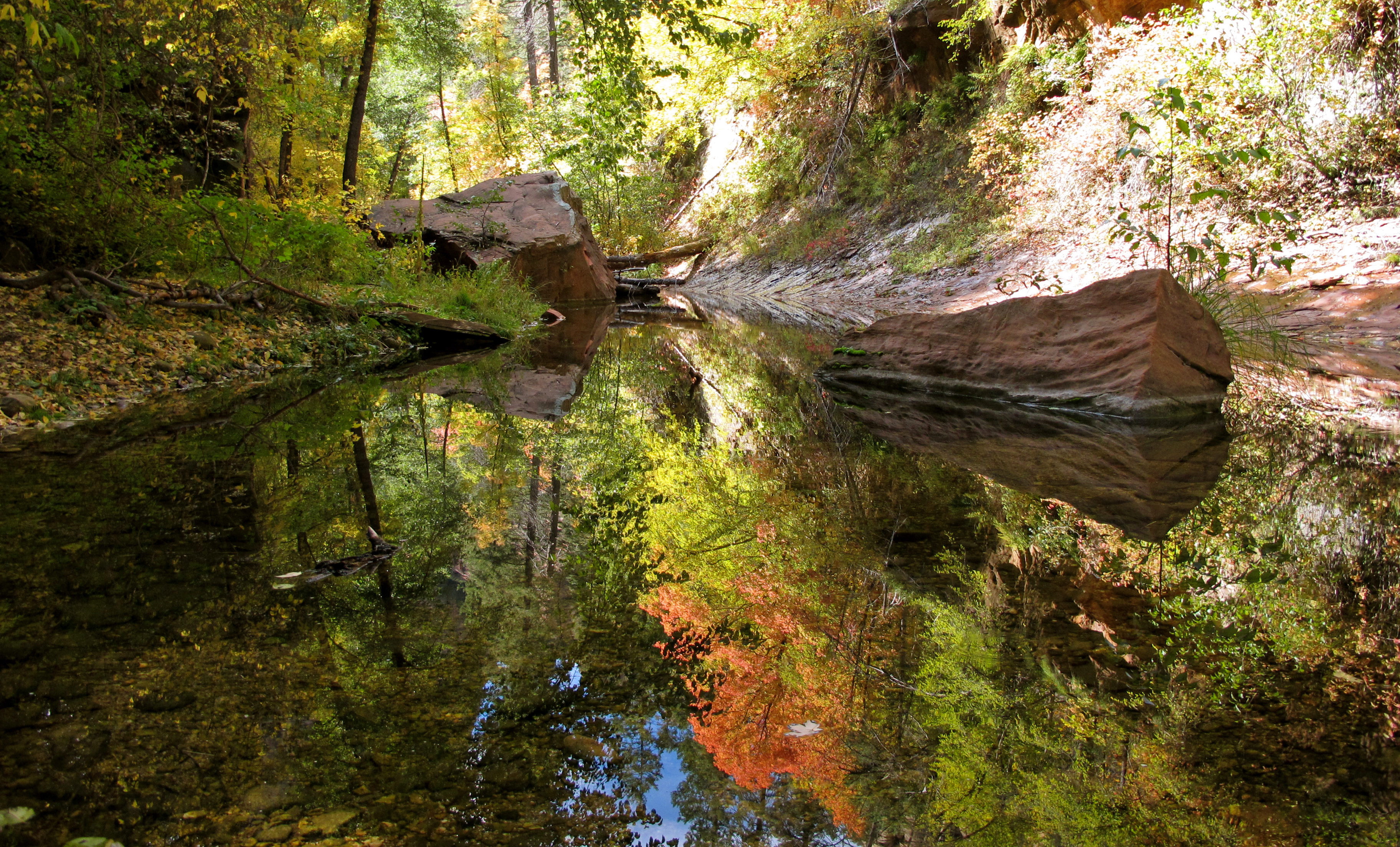 west_fork_of_oak_creek_reflections