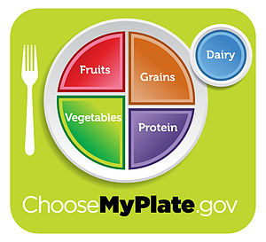 English: USDA MyPlate nutritional guide icon