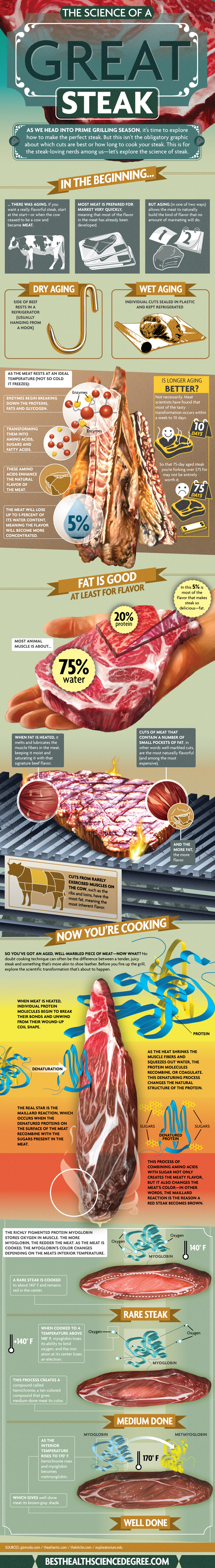 The Science of a Great Steak