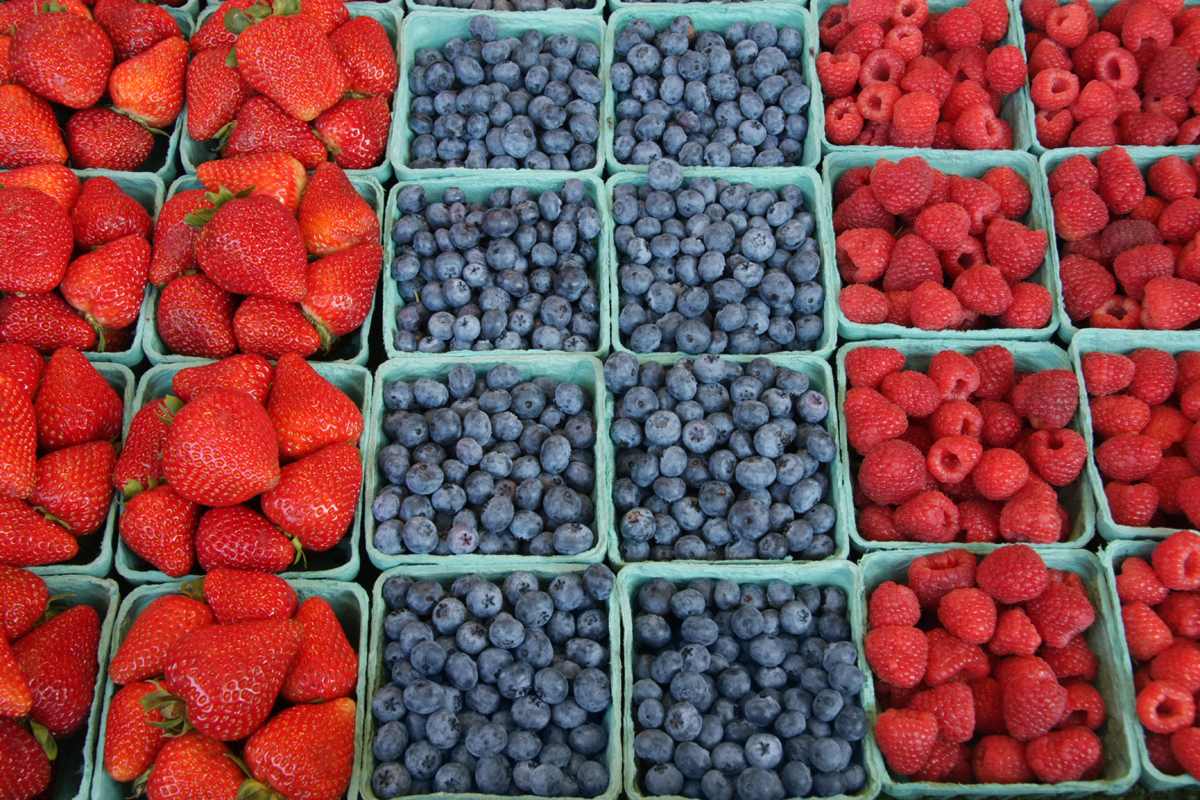 Fresh, organically grown berries - strawberries, blueberries, raspberries
